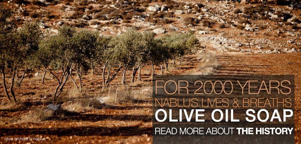 http://www.nablussoap.eu/wp-content/uploads/2011/02/background03.jpg